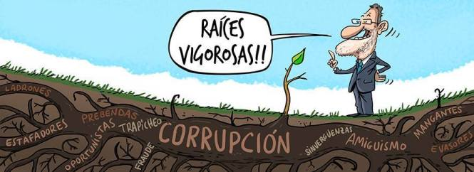 raices vigorosa