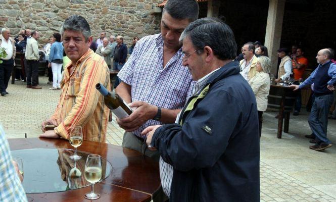 festa do viño de barro